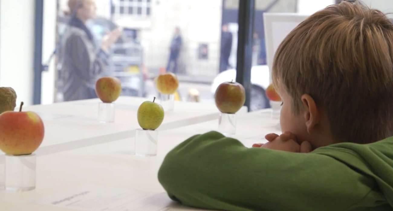 The Real Apple Store - wystawa jabłek w stylu Apple ciekawostki wystawa jabłek, Wideo, The Real Apple Store, Londyn, Apple Store, Apple  Z okazji Dnia Jabłka, które obchodzone jest w Wielkiej Brytanii w Londynie stworzona została specjalna wystawa jabłek. Co w tym dziwnego? RealApple 1300x700