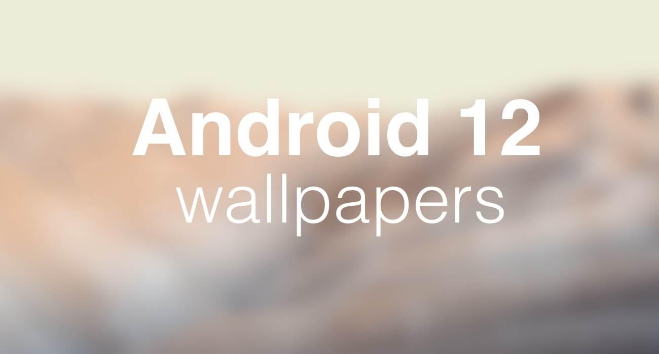 Tapety z najnowszego Android 12 już dostępne do pobrania polecane, ciekawostki wallpapers, tapety z Android 12 do pobrania, tapety z Android 12, tapeta z Android 12, download, Android 12  Oficjalne beta testy dopiero za kilka lub kilkanaście dni, a w sieci już pojawiły się tapety do pobrania z najnowszej wersji systemu operacyjnego Android 12. Android12 1 1