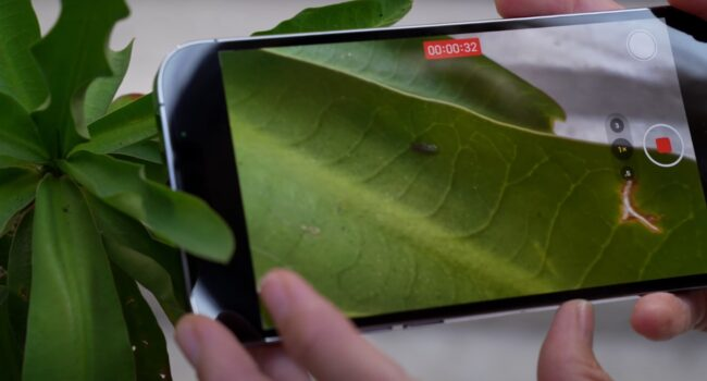 iphone13 3