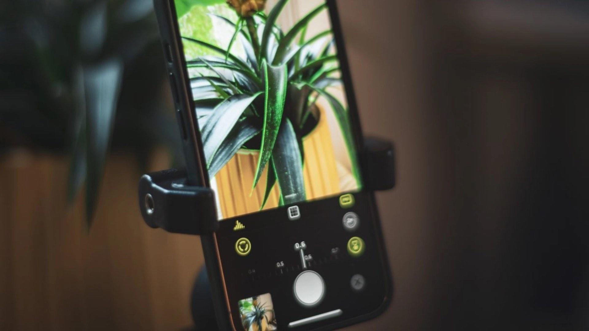 Tryb makro - jak włączyć na starszym iPhone? ciekawostki, box zdjecia makro, tryb makro z iphone 13 na starszym iphone, tryb makro, makro na starszym iphone, jak uruchomic tryb makro na starszym iphone  Jedną z nowości w iPhone 13 | 13 Pro jest tryb makro. Dziś pokażemy Wam jak korzystać z nowego trybu na starszych iPhone'ach - za darmo i bez Jailbreak. makro halide